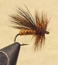 3925/Caddis-Variant-Multiple-Colors