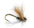 4337/Missing-Link-Caddis