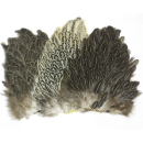 5697/Wapsi-Soft-Hackle-Hen-Saddle-Patch