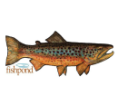 5892/Fishpond-Local-Sticker