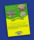 990/Underwater-World-Of-Trout-Discovery