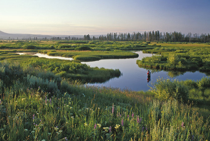 Firehole ranch montana travel lodges chicago fly for Chicago fly fishing outfitters