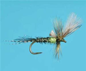 Harrop d d cripple green drake flies chicago fly for Chicago fly fishing outfitters